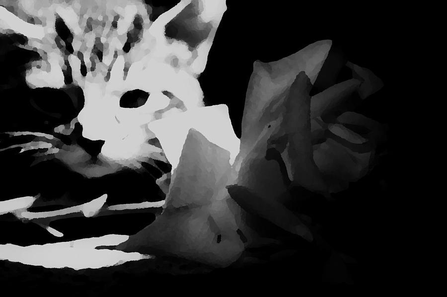 Cats Photograph - Hunt Of The Rose by Jessica Shelton