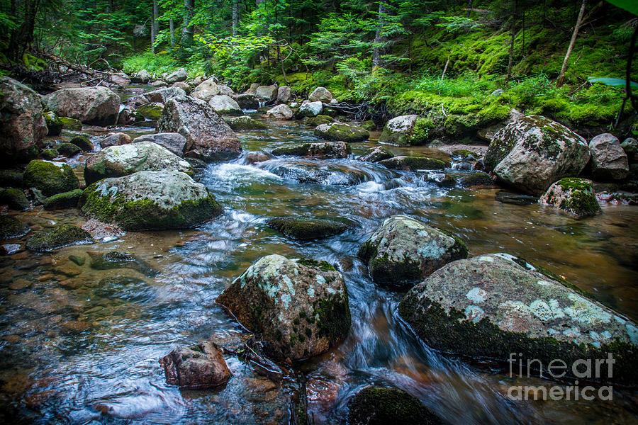 Hunters Brook Photograph