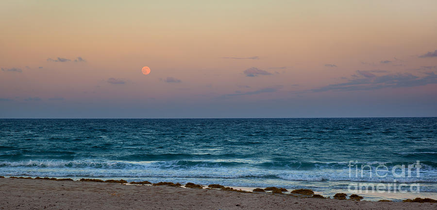 Hunters Moon Photograph - Hunters Moon by Michelle Wiarda