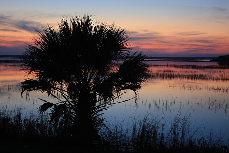 Hunting Island Photograph - Hunting Isalnd Tidal Marsh by Michael Weeks
