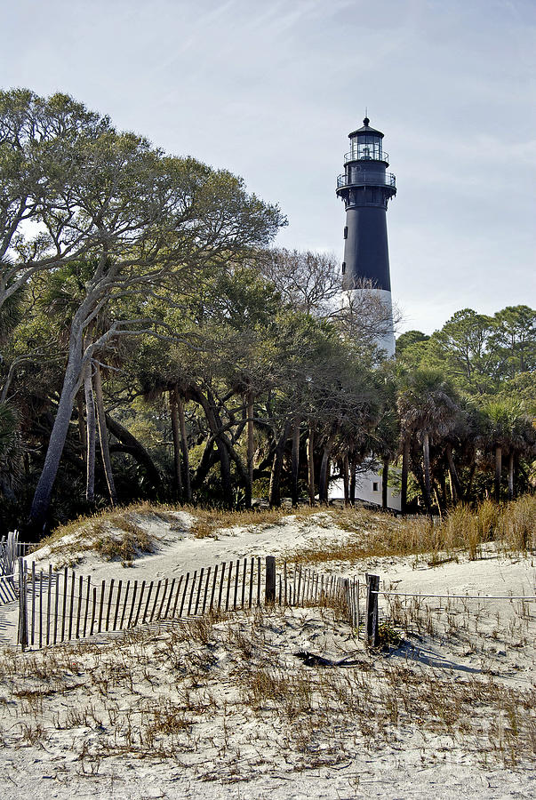 Hunting Island Sc Lighthouse Photograph By Skip Willits