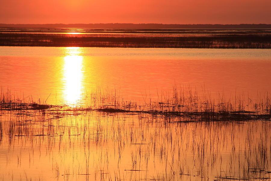 Hunting Island Photograph - Hunting Island Tidal Marsh by Michael Weeks