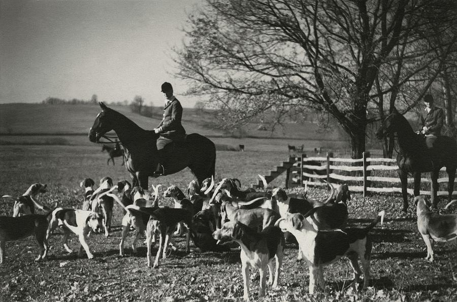 Huntsman Alfred Smithwick Sitting On His Horse Photograph by Toni Frissell