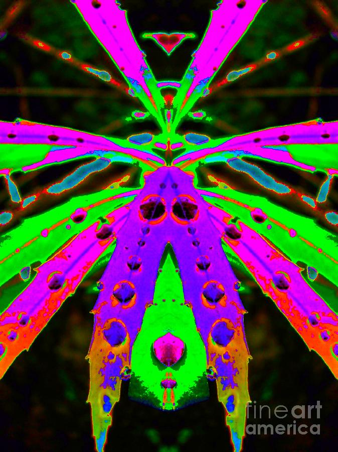 Huntsman Spider Digital Art - Huntsman Spider by Lorles Lifestyles