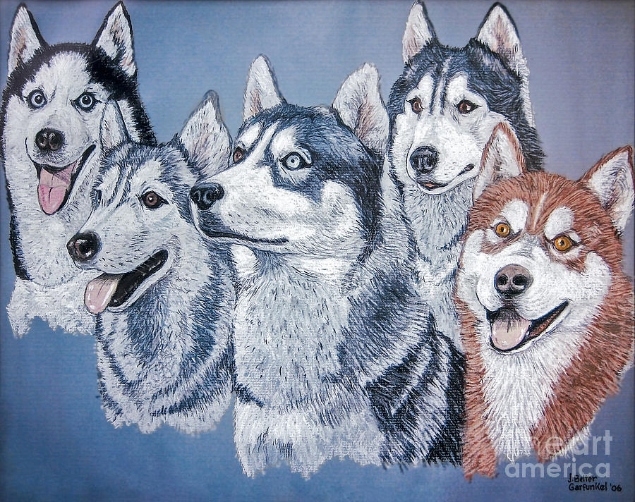 Huskies Painting - Huskies By J. Belter Garfunkel by Sheldon Kralstein