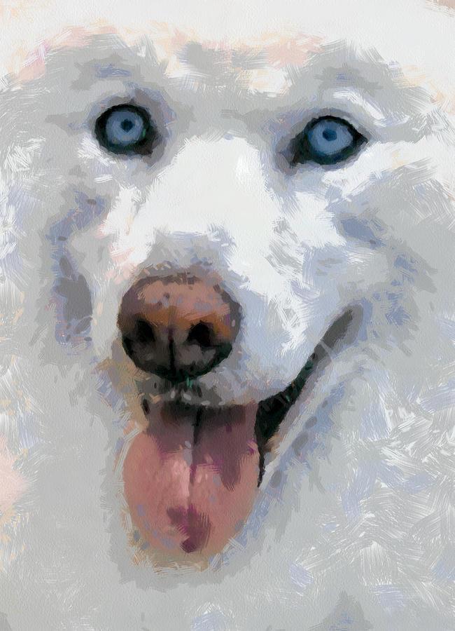 Siberian Husky Painting - Husky by Georgi Dimitrov