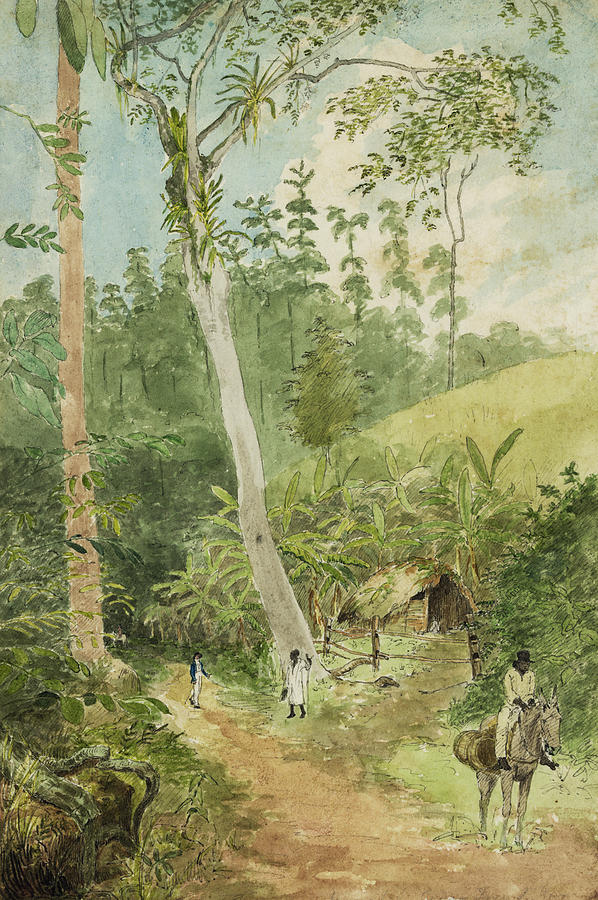 Watercolor Painting Painting - Hut In The Jungle Circa 1816 by Aged Pixel