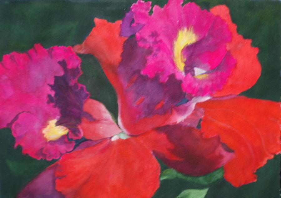 Flower Painting - Hybrid by Barbara Littenberg