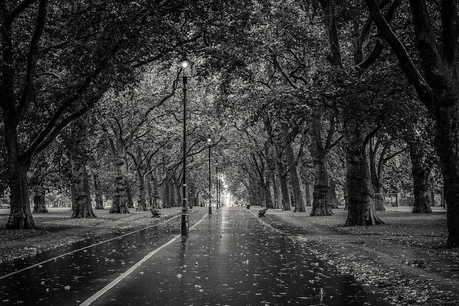 Artwork photograph hyde park london black and white by a souppes