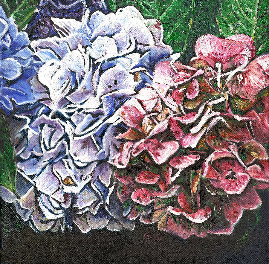Blooms Painting - Hydrangeas by Helen White