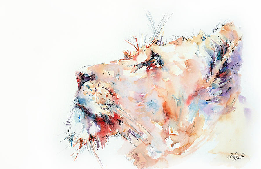 Lion Painting - I Belong To Africa ...  by Stephie Butler