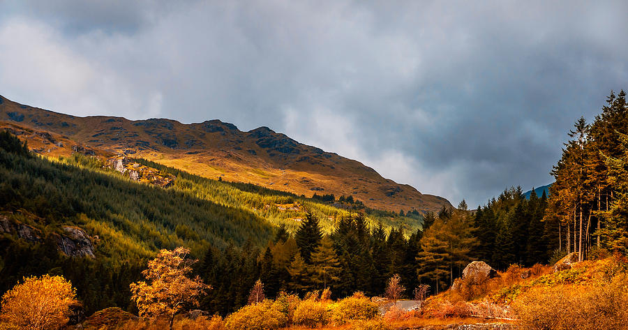 Scotland Photograph - I Cant Forget This Light. Scotland by Jenny Rainbow