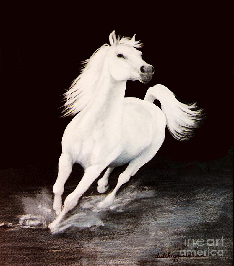 White Horse Painting - I Dreamed Him White by DiDi Higginbotham