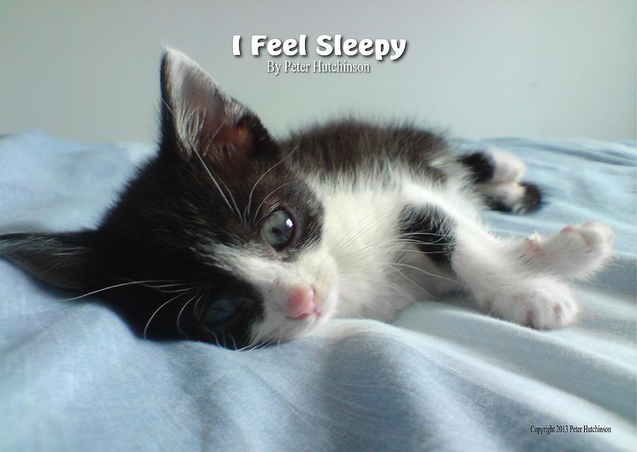 I Feel Sleepy by Peter Hutchinson