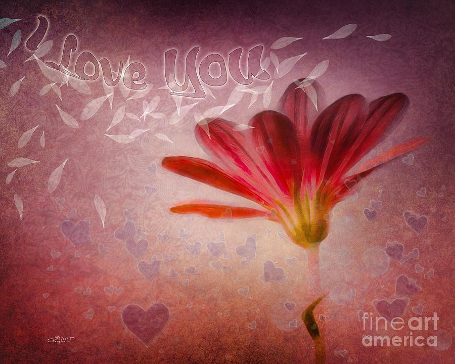 Photo Photograph - I Love You by Jutta Maria Pusl