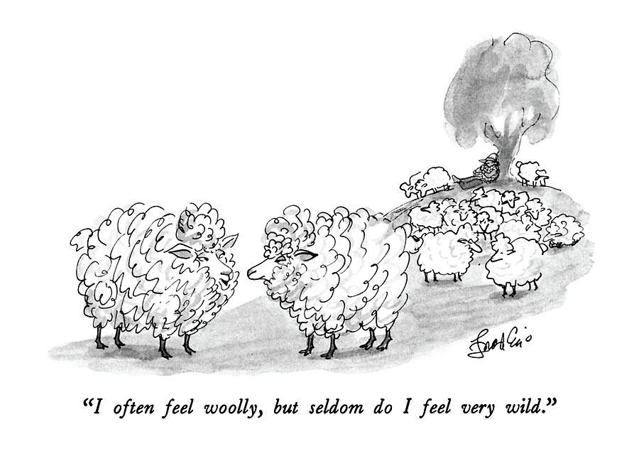 I Often Feel Woolly Drawing by Edward Frascino