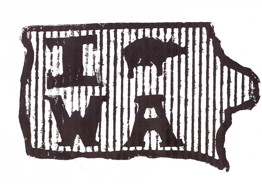 Iowa Drawing - I Pig W A by Jame Hayes