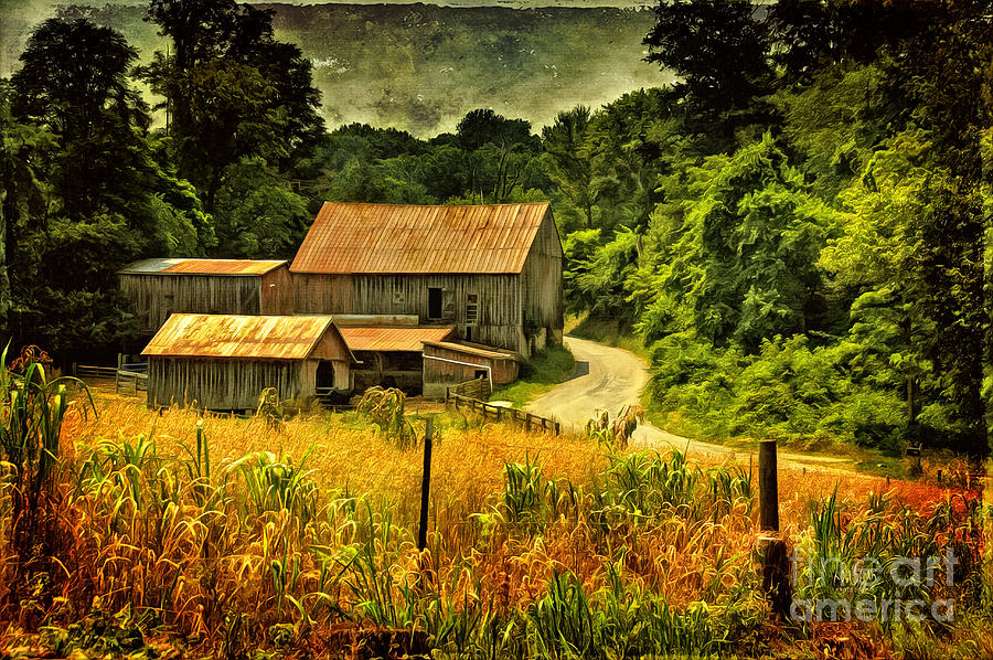 Barn Photograph - I Remember It Was In The Summer by Lois Bryan