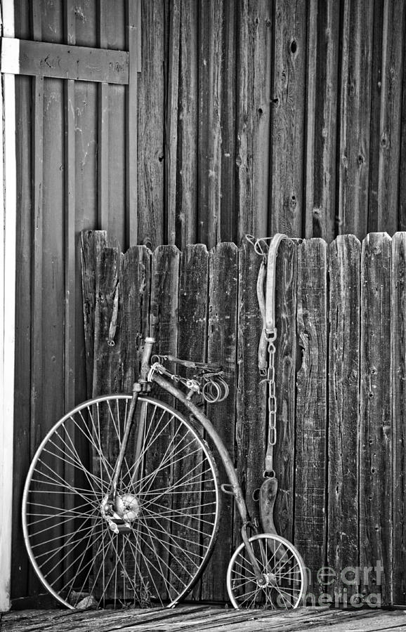 I Want To Ride My Bicycle In Black And White Photograph by ...