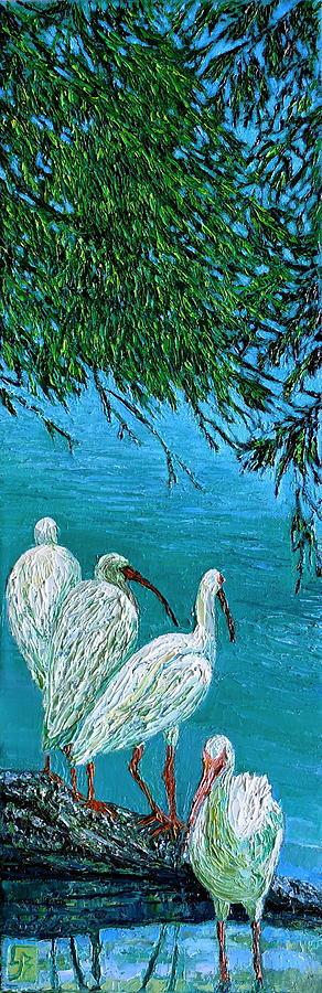 Ibis Under Cypress by Linda J Bean