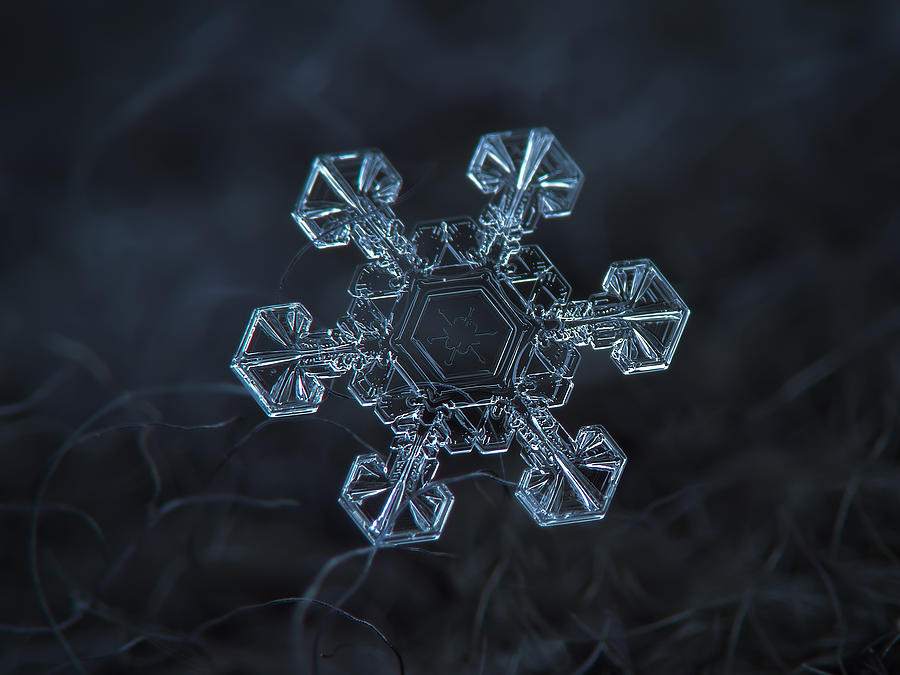 Snowflake Photograph - Snowflake Photo - Ice Crown by Alexey Kljatov