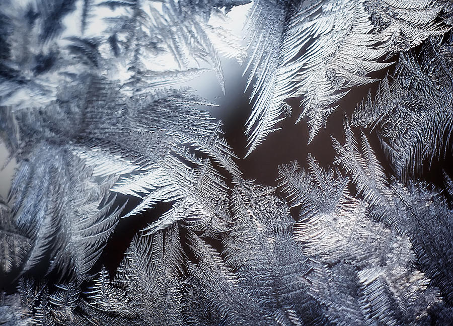 Ice Crystals Photograph