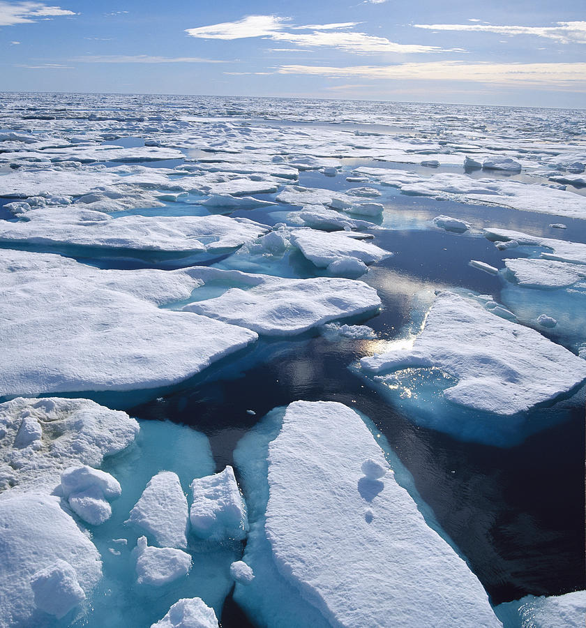Ice Floes In Arctic Northwest Territories Photograph By