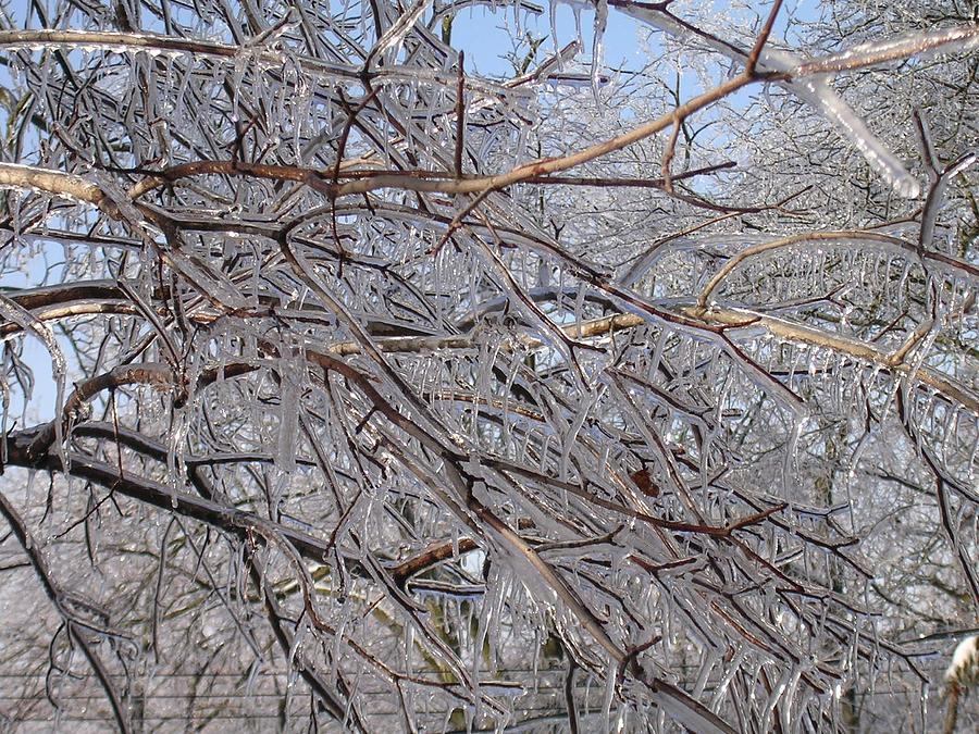 Ice Photograph - Ice In December by Dusty Reed