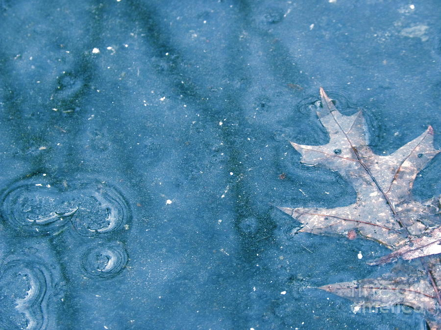 Ice Photograph - Ice Reflections 2 by Laura Yamada