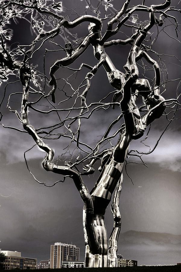Fermet Sculpture - Ice Veins In The Sky by Joenne Hartley