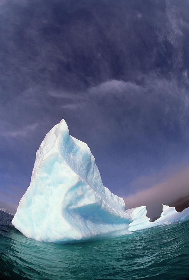 Iceberg Adrift Near South Orkney Photograph by Colin Monteath
