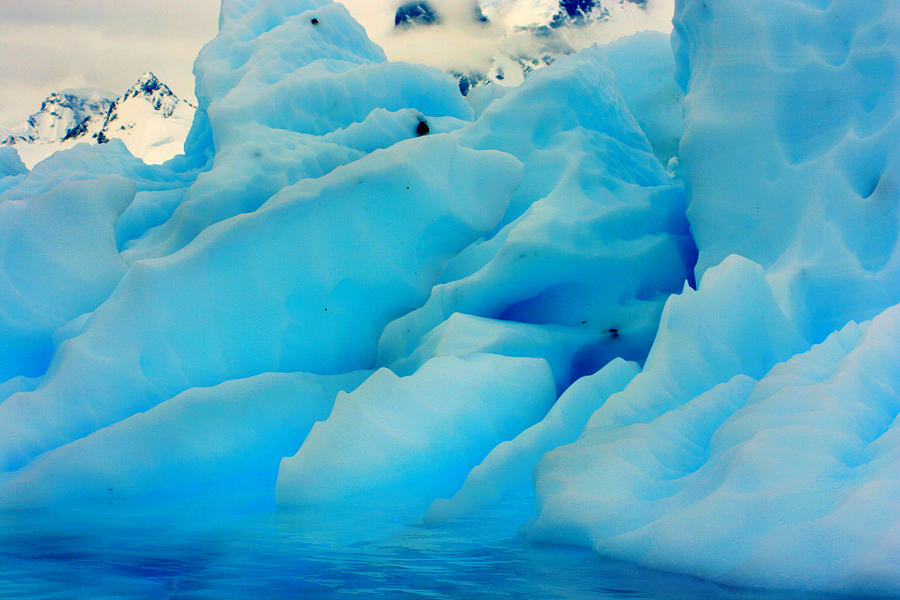 Icebergs Photograph - Iceberg by Amanda Stadther