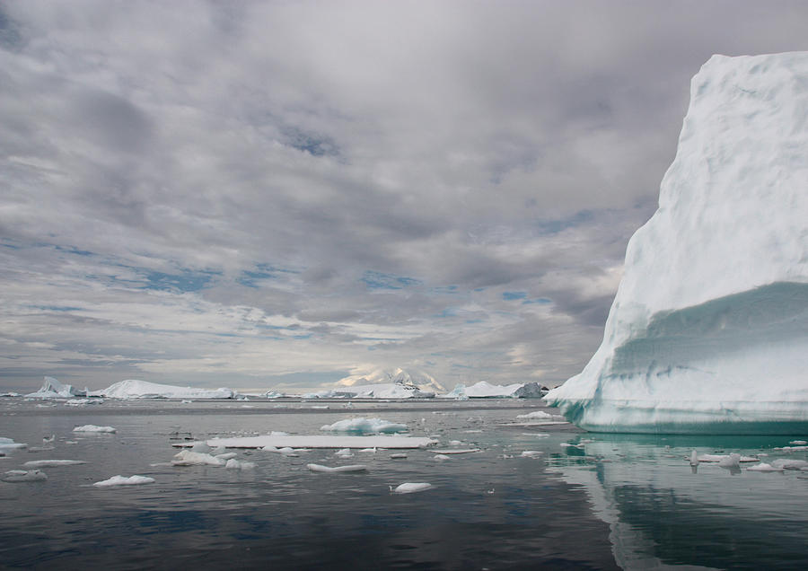 Iceberg Reflections By Steve Is On Holiday