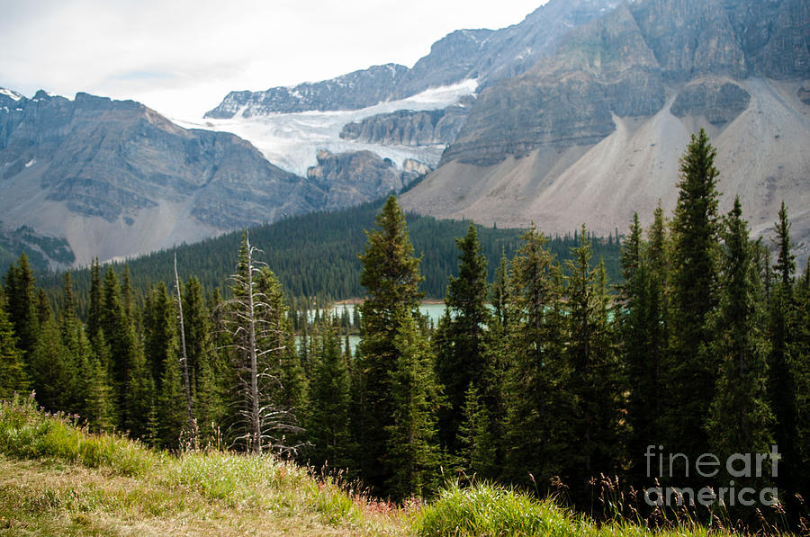 Icefields Parkway Photograph - Icefields Parkway 2.0590 by Stephen Parker