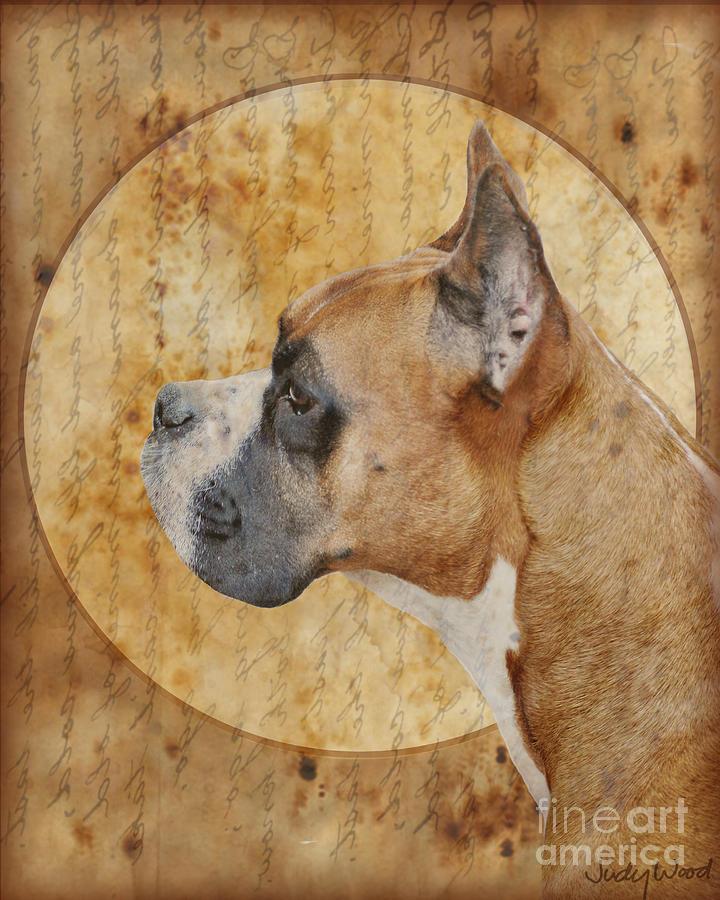 Dog Digital Art - Icon by Judy Wood