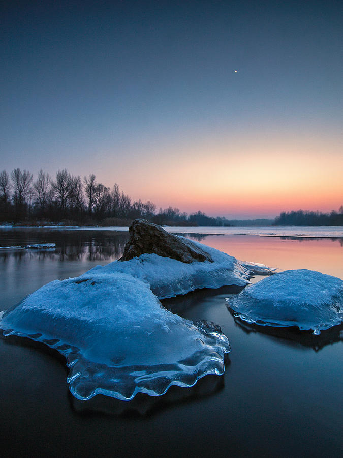 Landscapes Photograph - Icy Jellyfish by Davorin Mance