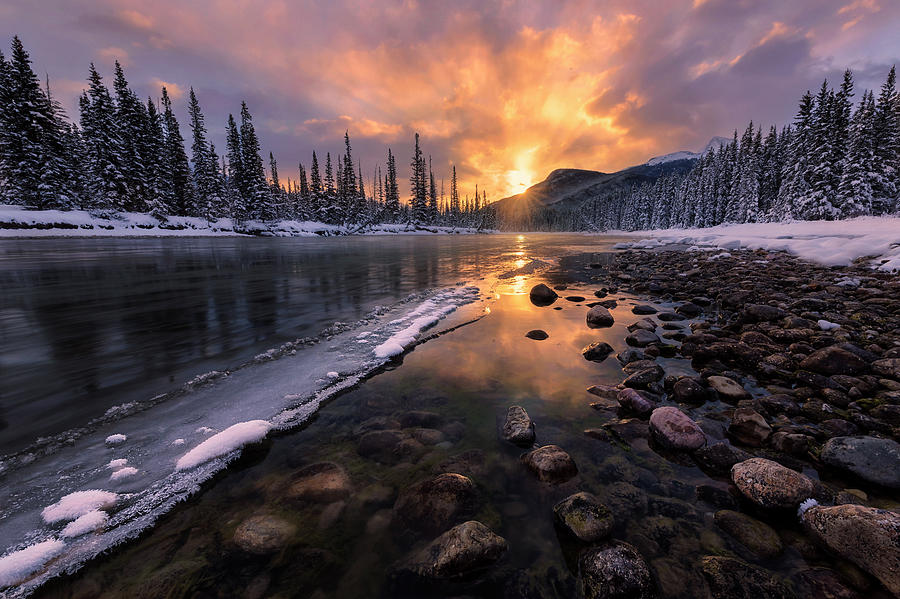 Sun Photograph - Icy Morning On Fire by Yun Wang