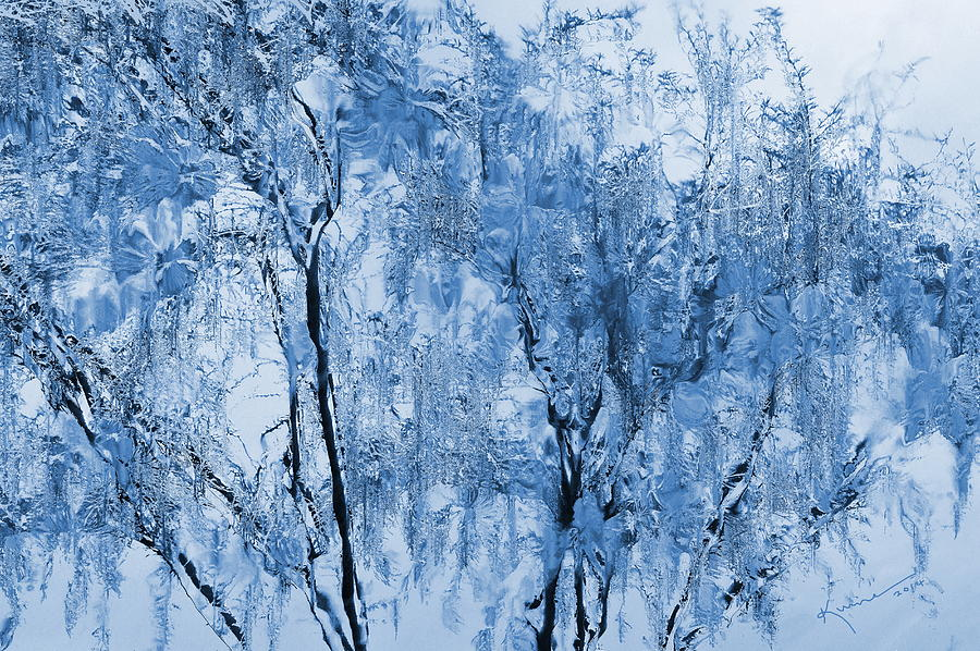 Crystal Photograph - Icy Winter by Kume Bryant