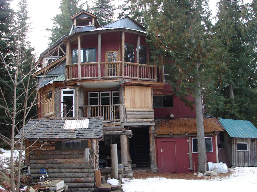 Idaho Hippie House 3 Stories Built On Tree Trunks