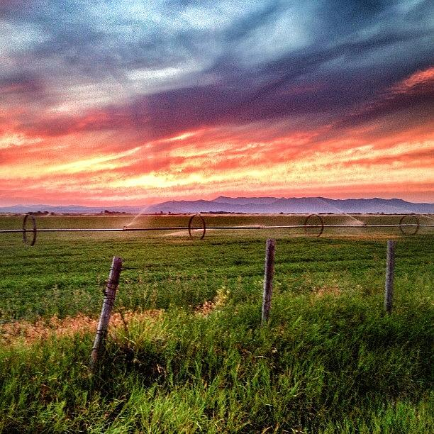 Sunsets Photograph - #idaho #sunsets by Cody Haskell