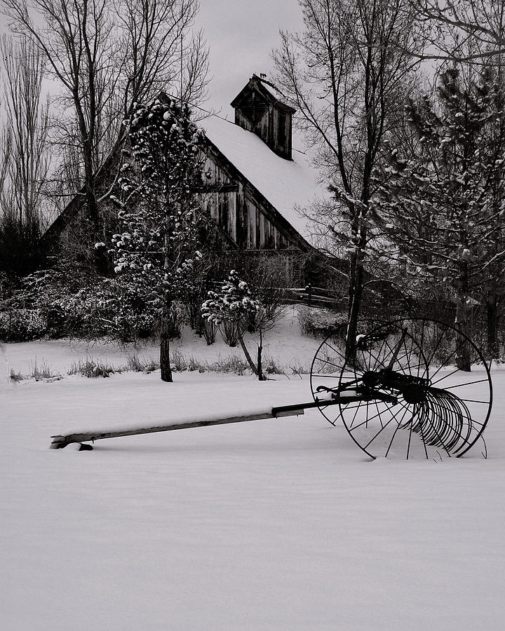 Winter Photograph - Idle Time - Waiting For Spring by Steven Milner