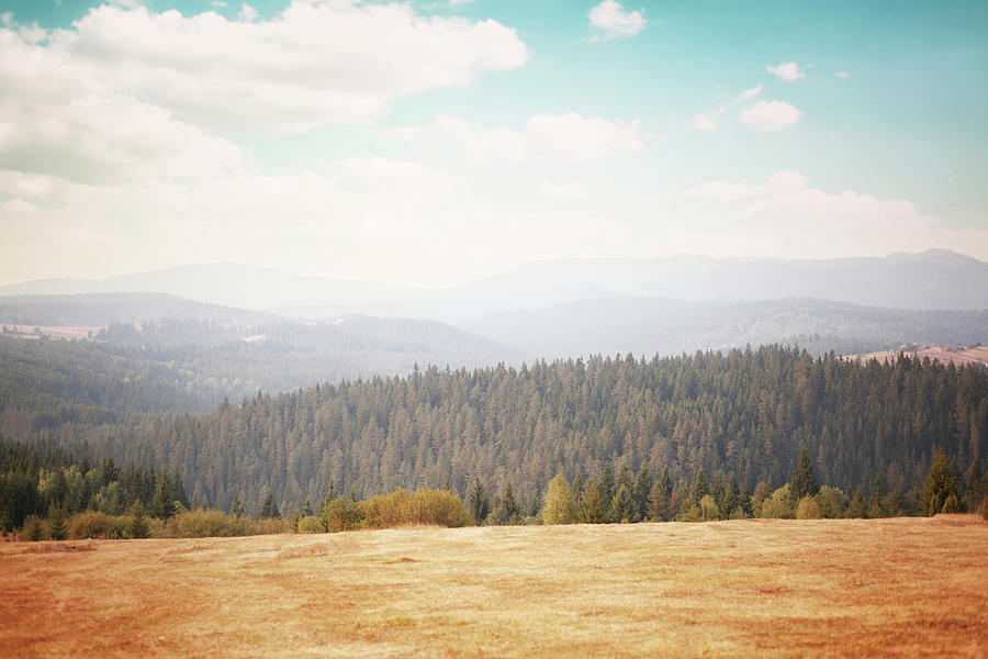 Idyllic Summer Countryside Photograph by Lechatnoir