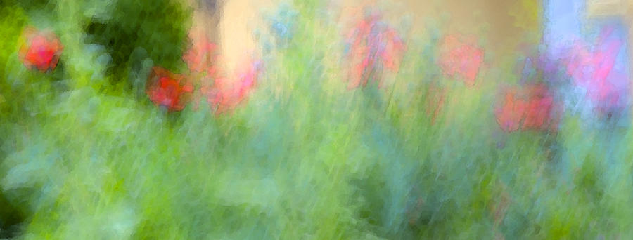 Garden Photograph - If My Front Yard Was Giverny by Theresa Tahara