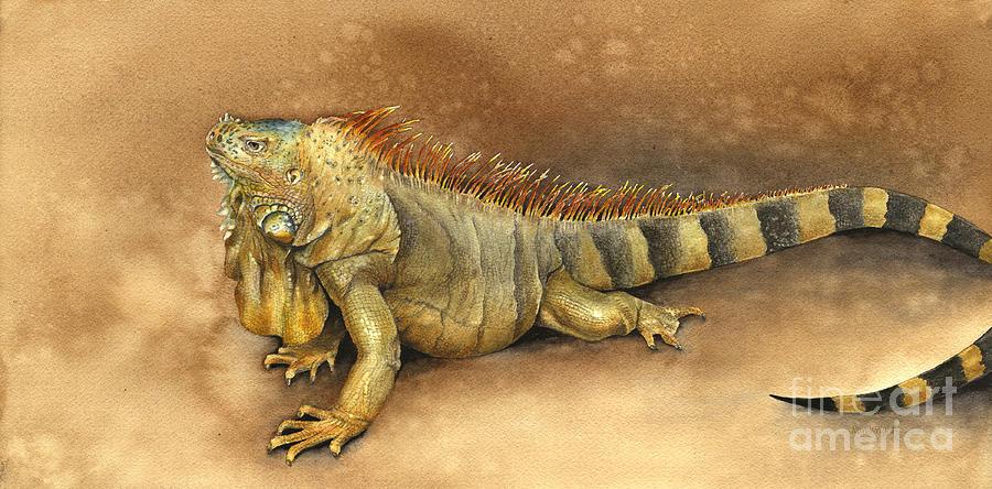 Animals Painting - Iguana by Nan Wright