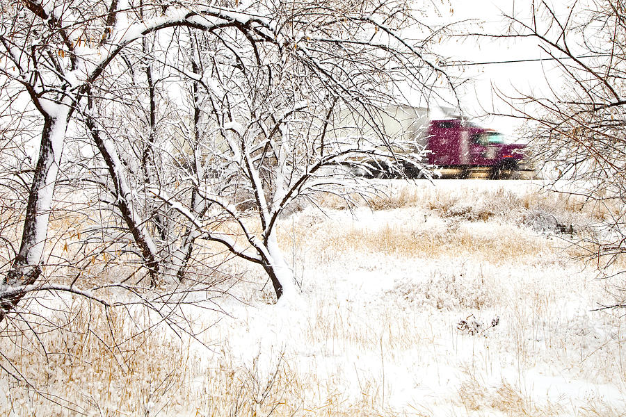 Canada Photograph - Ill Be Home For Christmas by Theresa Tahara