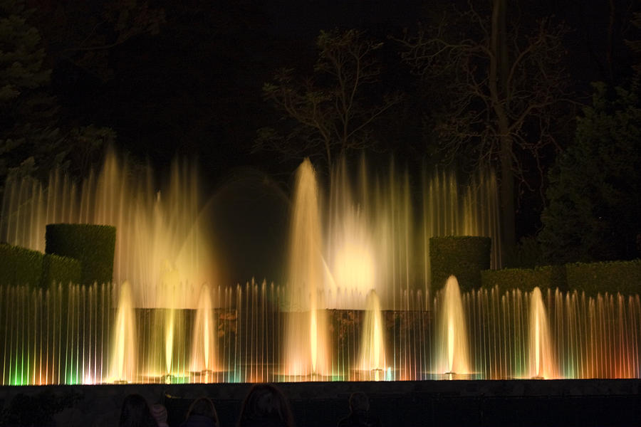 Water Photograph - Illuminated Dancing Fountains by Sally Weigand