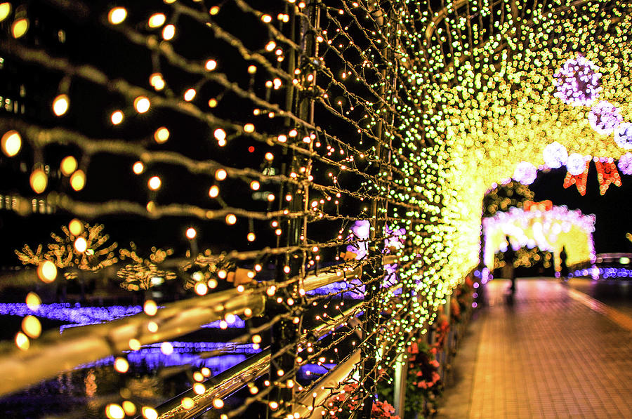 Illuminations Of Kokura Photograph by Photo By Ogizoo