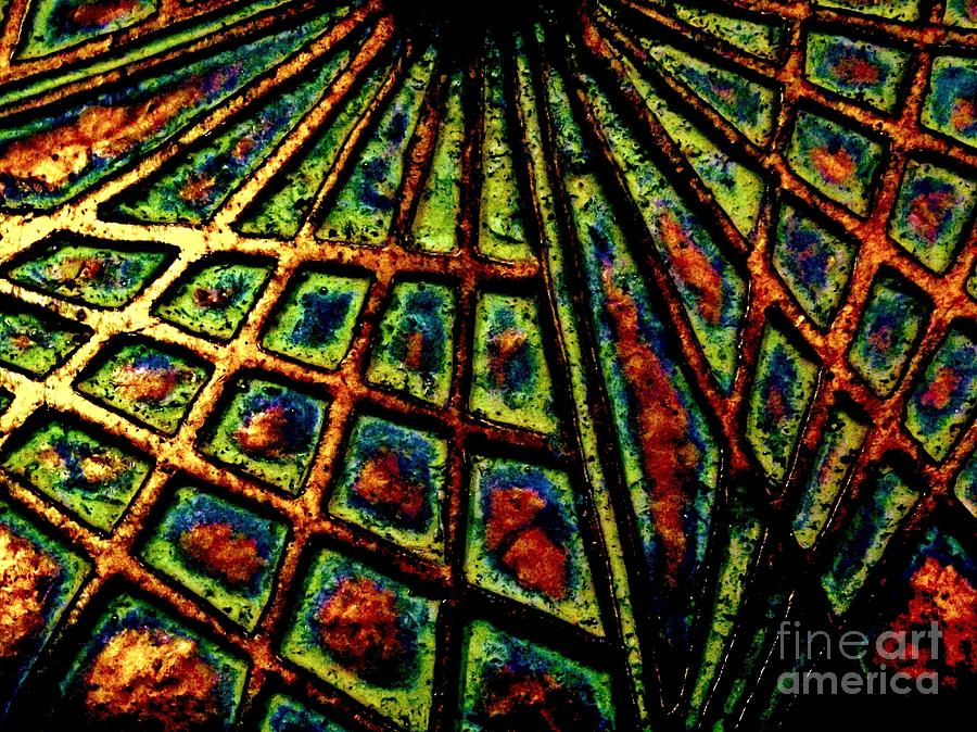 Color Photography Photograph - Illusions by Lori-Anne Fay