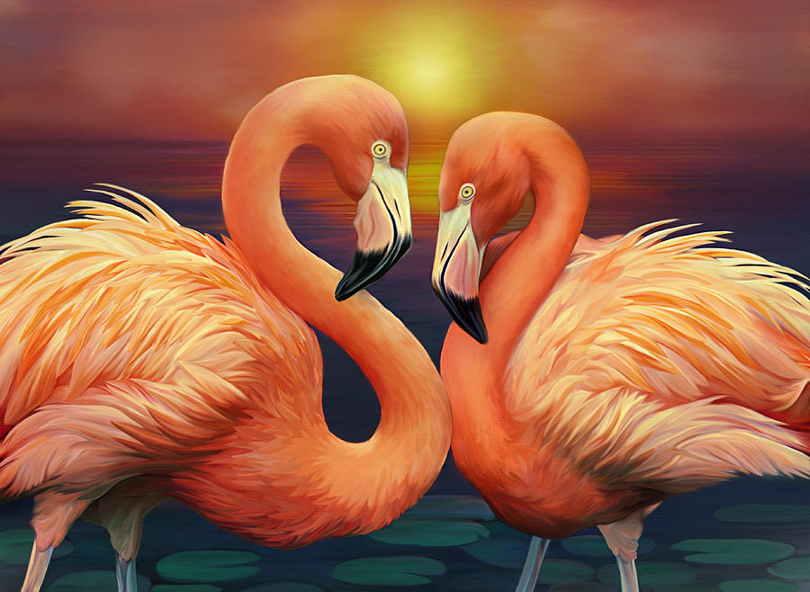 Illustration Of Flamingos Digital Art by Illustration By Shannon Posedenti
