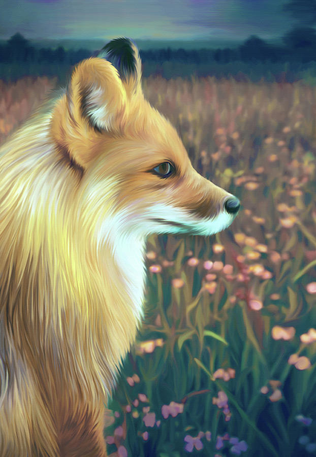 Illustration Of Red Fox Digital Art by Illustration By Shannon Posedenti